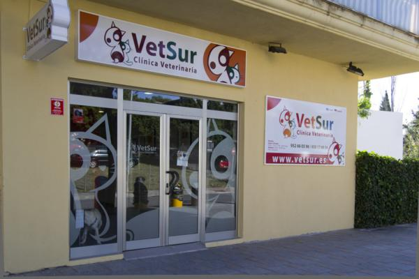 Veterinary clinic & emergency vets Fuengirola