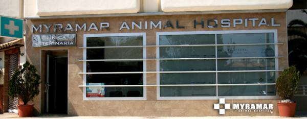Veterinary Animal Hospital Clinic Fuengirola