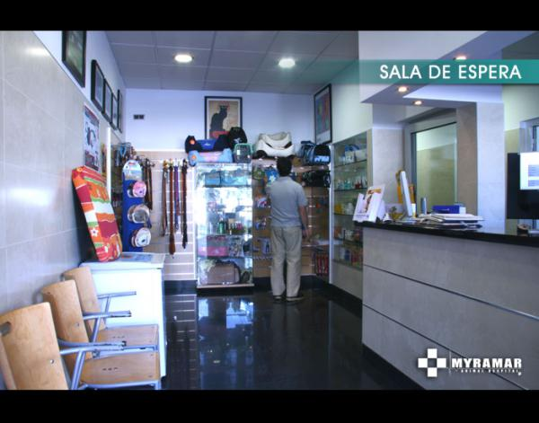 Veterinary Animal Hospital Clinic Marbella