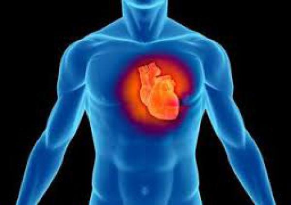 Cardiology Marbella